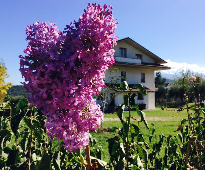 Country House per Eventi e Casa Vacanze