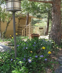 Mountain View Retreat - Idyllwild-Pine Cove