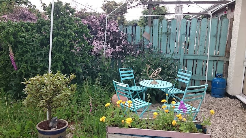 A gardener would say my garden is full of weeds but they are all flowers to me and the bees seem to like them so I leave them. Welcome to sit under the gazebo wind permitting and eat/have a coffee.