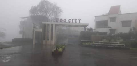 The Fog Studio