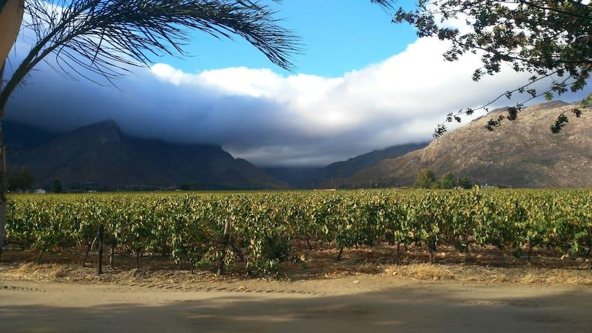 Damhuis Guesthouse, winefarm living - Rawsonville - Cabana