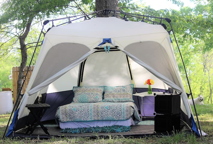 Come As You Are Camping - Just Bring a Toothbrush! - Castalian Springs - Tenda