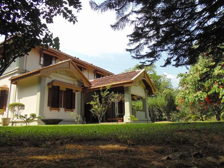 Historic Tea Estate & Organic Farm #3 @ Sinharaja