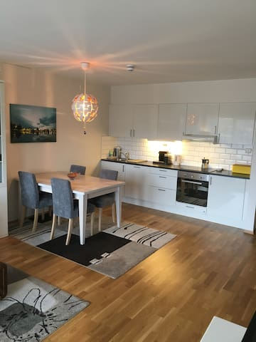 NEW apartment for short term