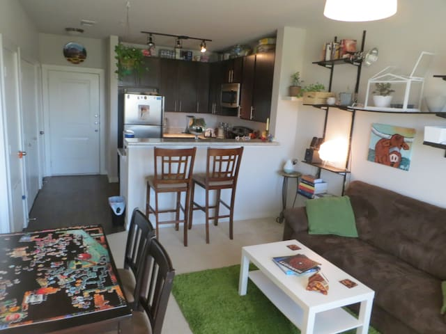 Cozy 1BD w/ full amenities & 2 cats - The Colony