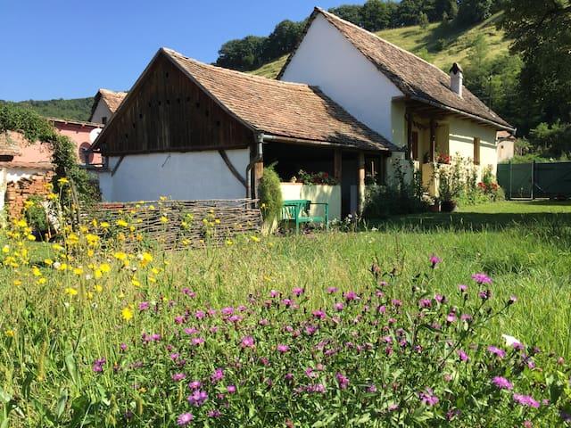 Lovingly Farmhouse in Transylvania