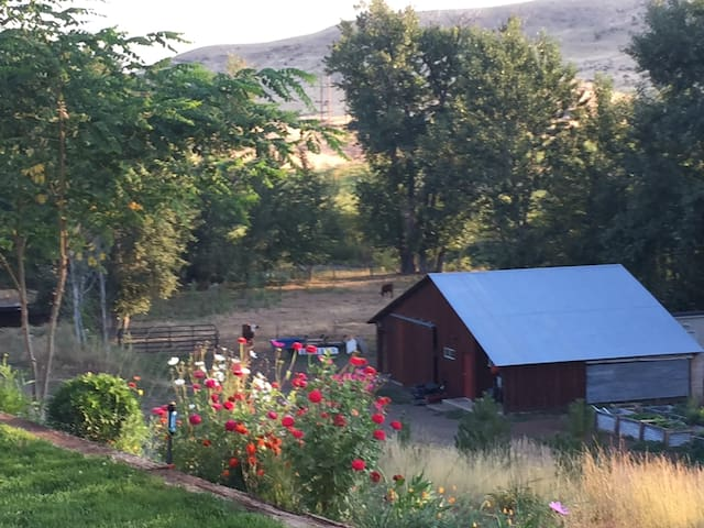 Middle Fork B & B  #1