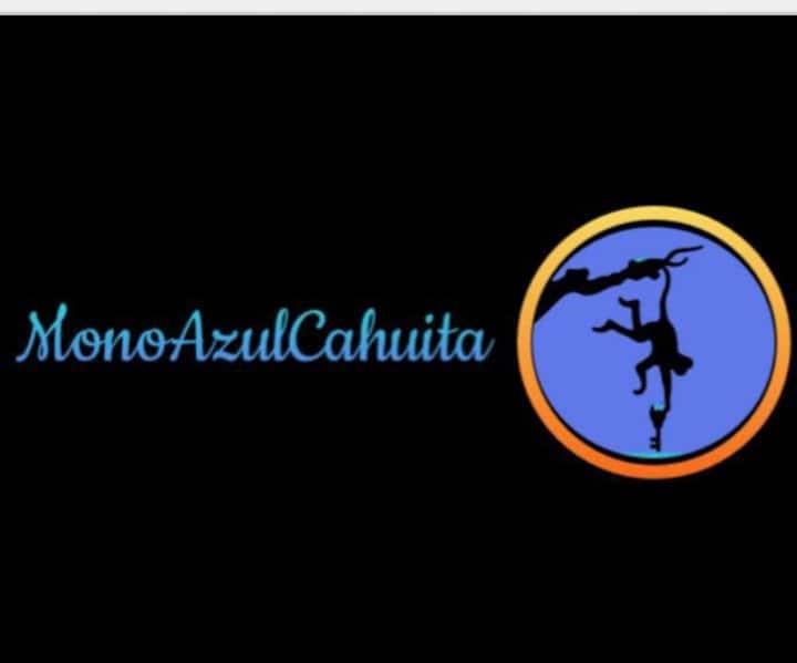 MonoAzulCahuita #1