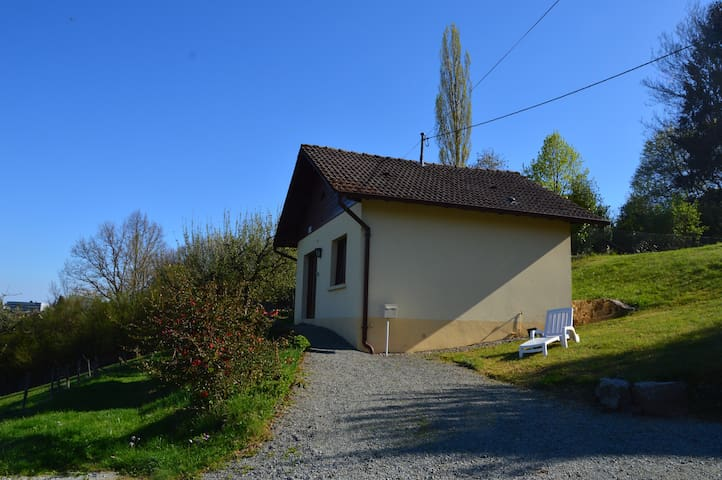 Chalet Rose - Masevaux - Holiday home