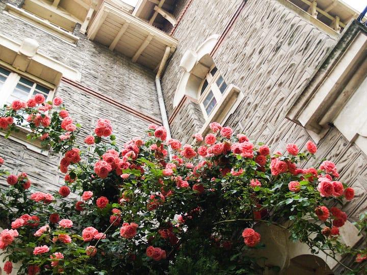 Chambre d'hôtes dans une maison historique - 4