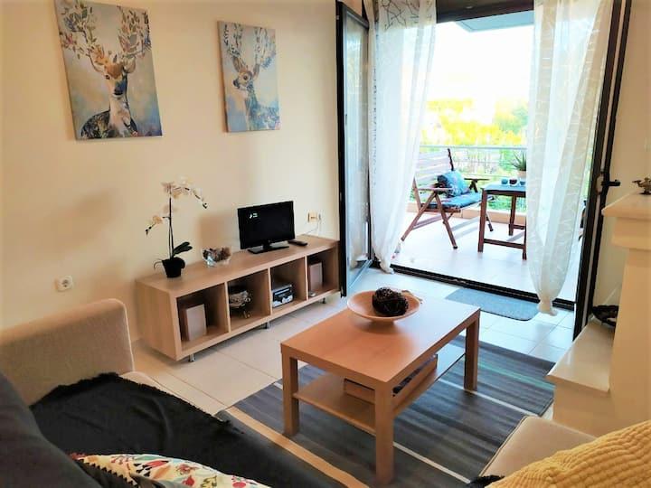 Maria's house apartment in skala Fourkas