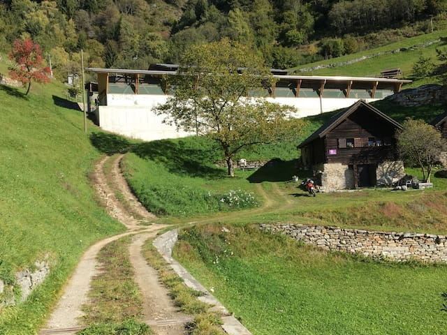 Cascina nelle Alpi Svizzere immersa nella natura