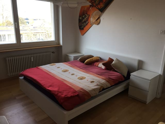 Clean big room in a nice location - Basel - Daire