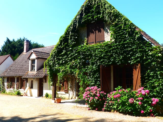 Le Jardin des Ocreries - Saint-Georges-sur-la-Prée - Bed & Breakfast