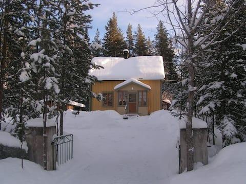 Ferienhaus Waldruhe