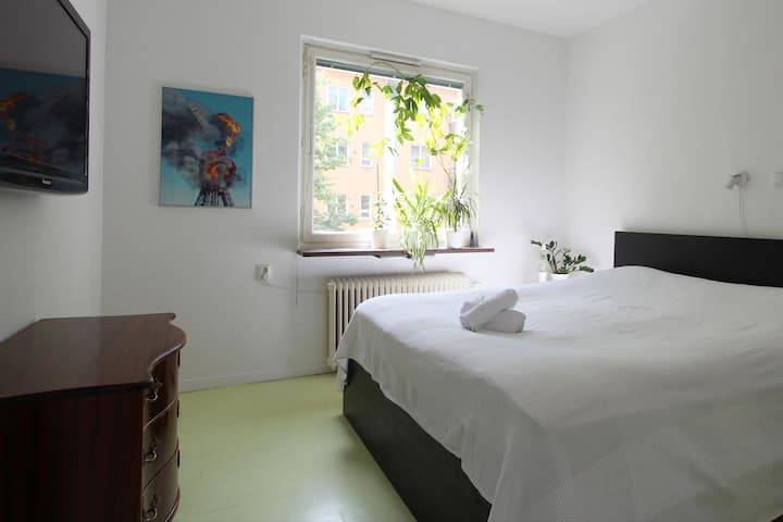 whole apartment in Stockholm, cosy area