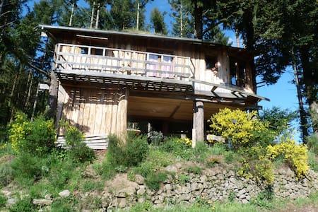La cabane - Isserteaux - Kabin