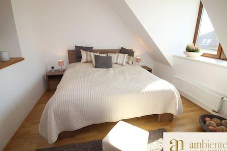 Apartment near the city center BRNO - Brno