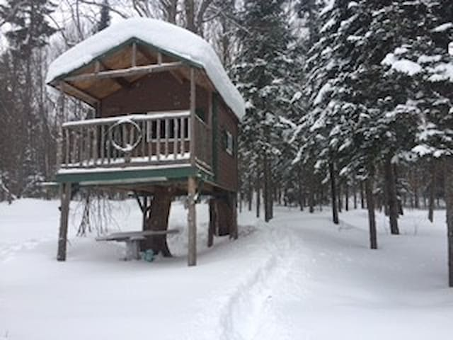 Rustic Upper Peninsula TREEHOUSE-unique experience - Houghton