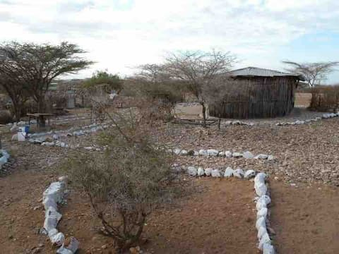 A 20 bedrooms bed and breakfast  in Kaisut-Desert