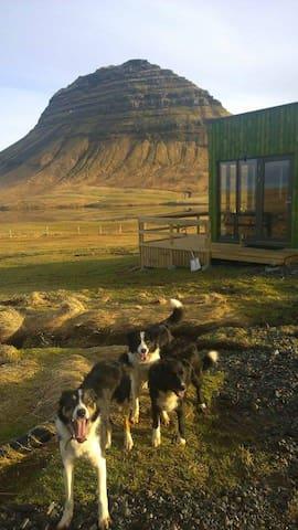 Grásteinn, Experience The Farm Life. - Grundarfjörður - Cabane