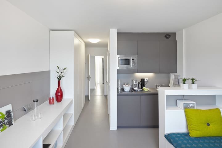 Fully equipped entire apartment in Bahnstadt