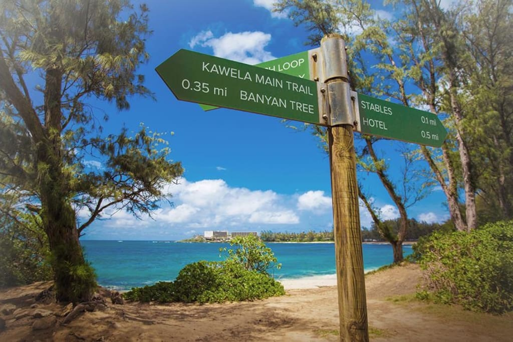 kahuku dating site Check out our list of the top 10 things to do in kahului and wailuku,  iao valley is the site where king kamehameha the  dating all the way back to the.