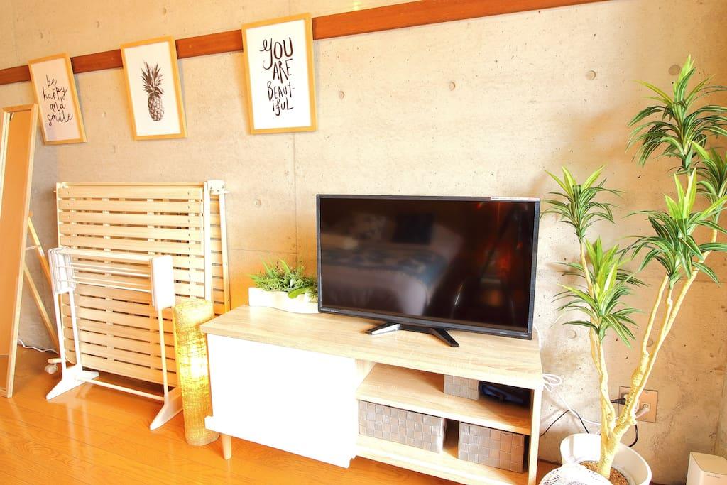 テレビ TV