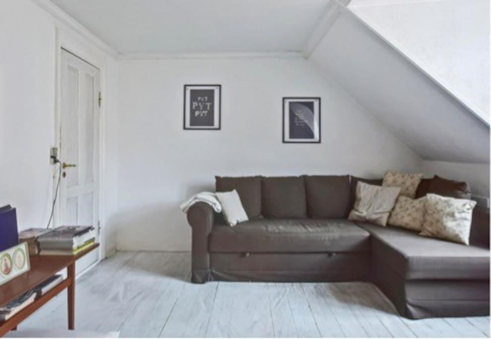 Tv stue med sove sofa.
