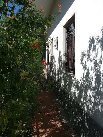Casa Fahnenberg_Garden Apartment - San Pietro Clarenza - Appartement