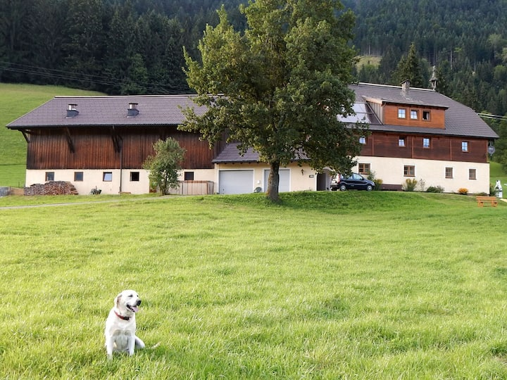Kiblerhof