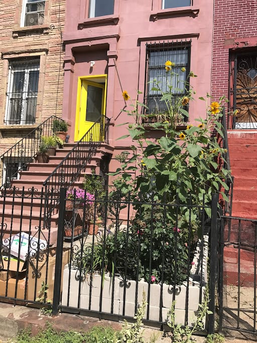 This is my one hundred year old 5 story brownstone fully renovated to the highest standards. With art studio and large private garden on the ground floor.