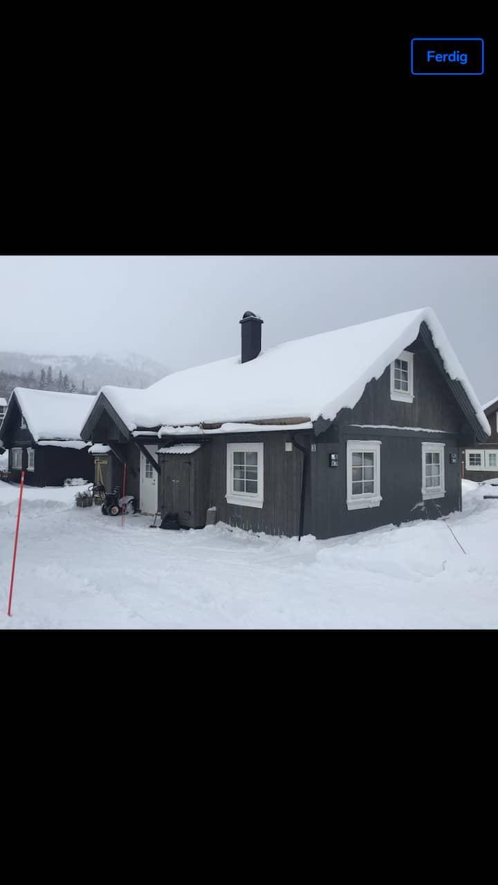 Hytte i Rauland Telemark