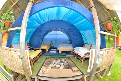Spacious tent under the thatched roof