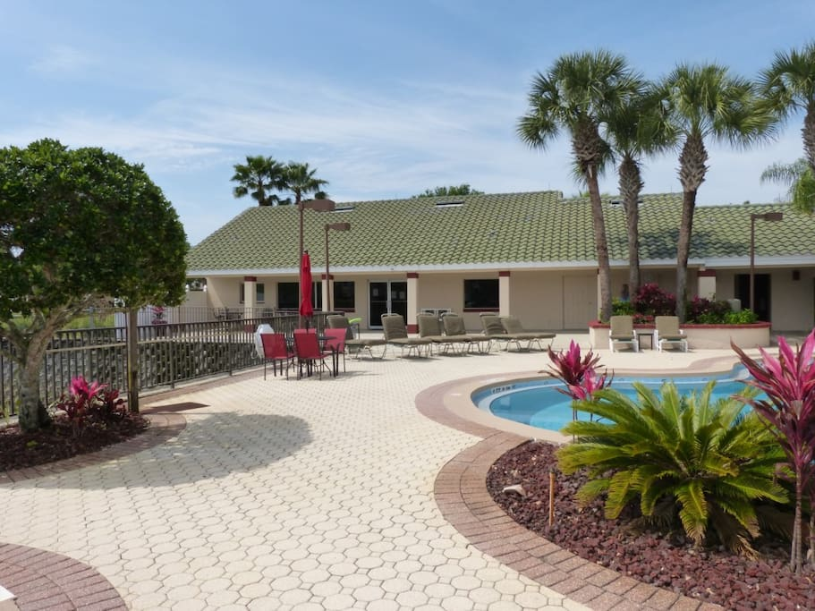 Building, Yard, Pool, Water, Palm Tree