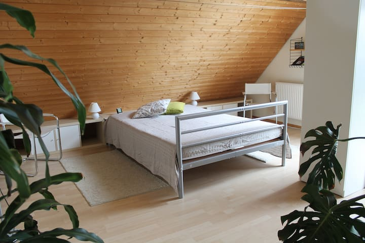 Übernachten in heller, sonniger Wohnung - Bisingen - Apartamento