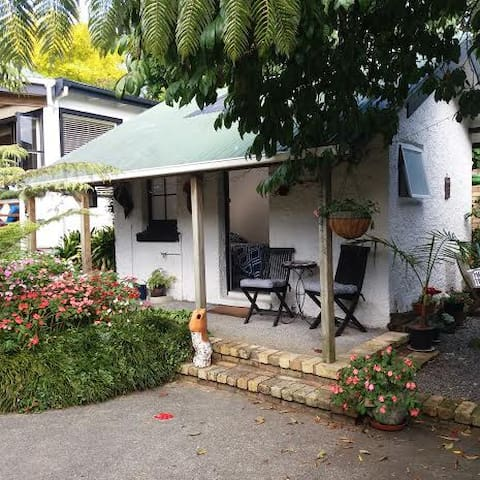 Private garden studio in Kingsland - Auckland - House