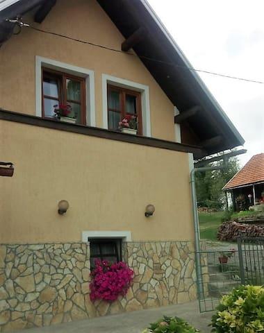 Apartman Leon na cesti Rijeka - Zagreb