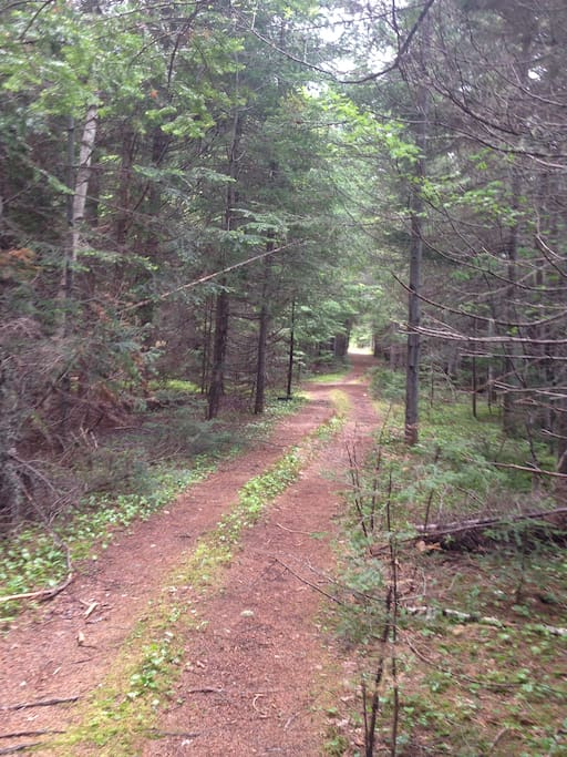 Trail derrière la maison