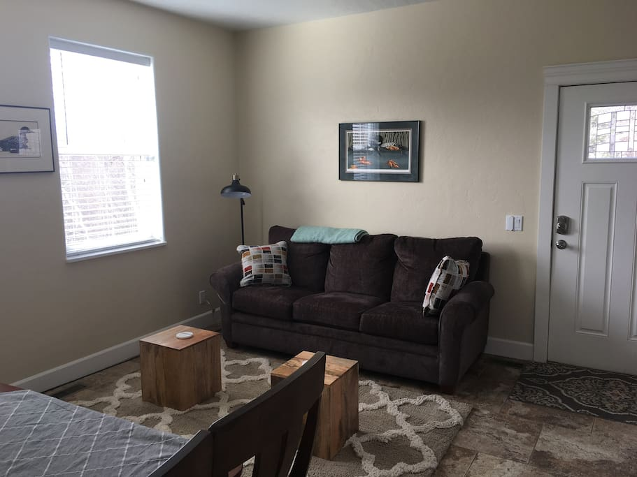 Living Room/Pull Out Couch