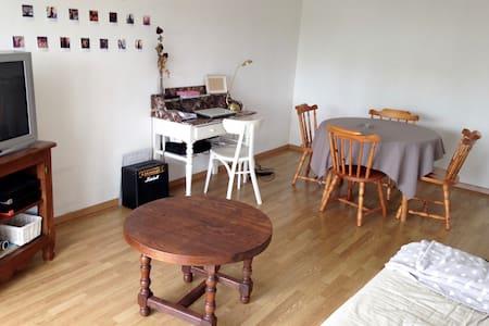 Appartement spacieux et calme - Nancy - 公寓