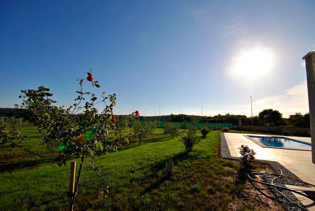 Der angelegte Garten