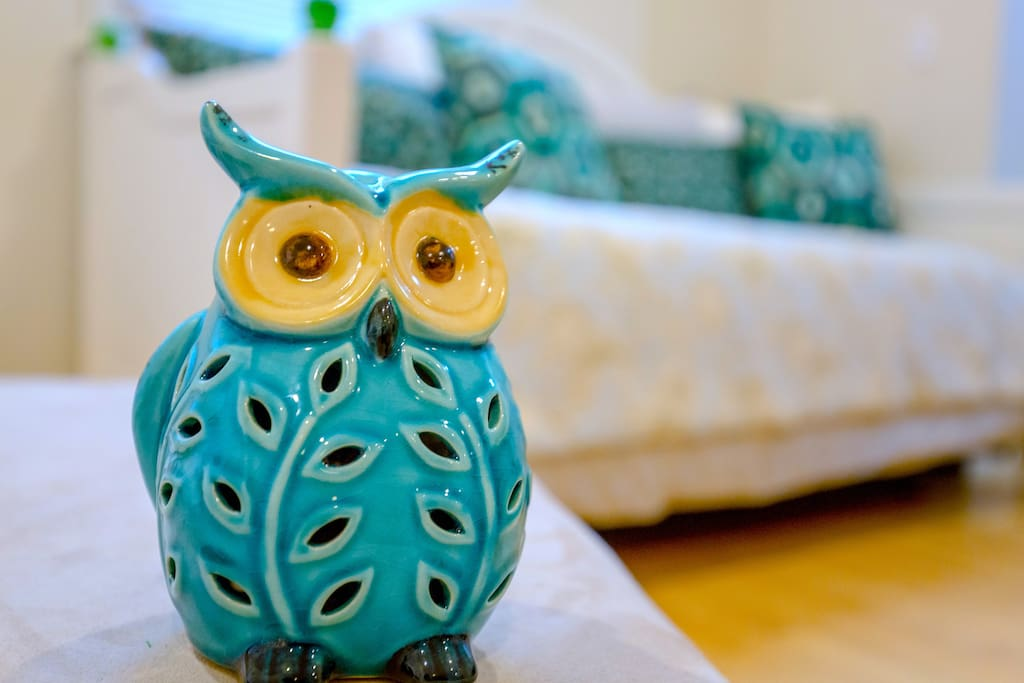 This owl is the smartest on earth. That's why it picked a place that's perfect for both Harvard and MIT as well as Kendall Square high tech and biotech companies!