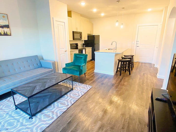 Texas Corporate Housing Professional Apartment