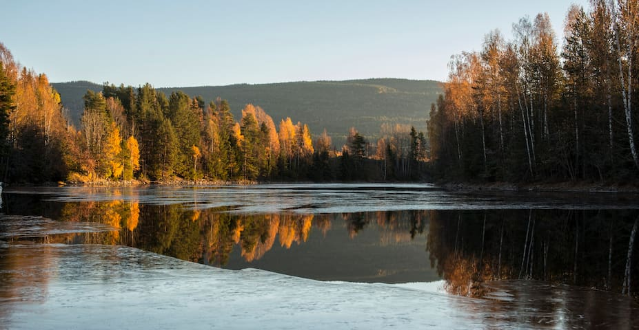 Pure nature. Quiet place by river. Ski/boat