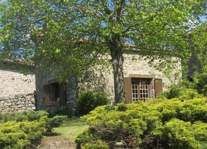 Très joli petit gîte en pierre, - Riotord - House