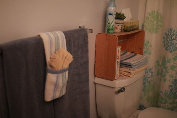 Towel rack and toilet.