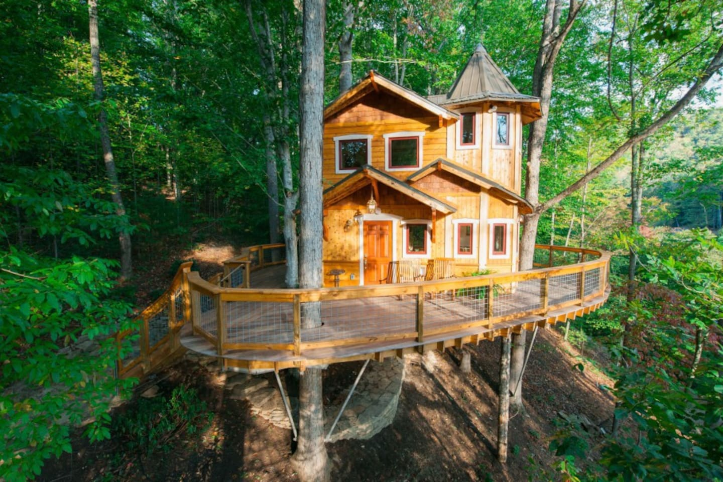 Behold the magnificent treehouse!!