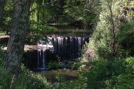 Paraíso de violetas-Cabaña ecológica del bosque-
