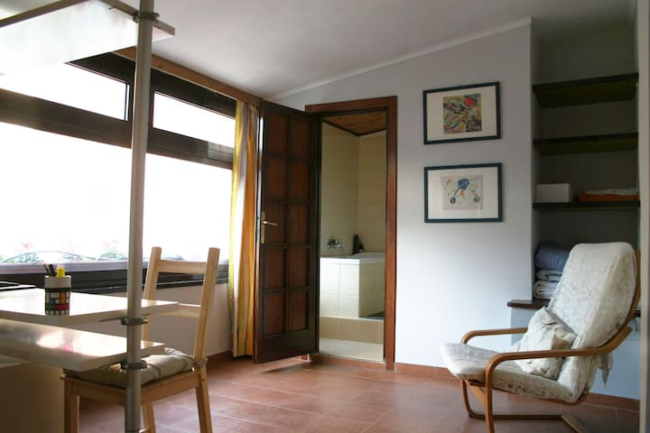 LARGE PRIVATE ROOM WITH BATHROOM - Rome - Huis